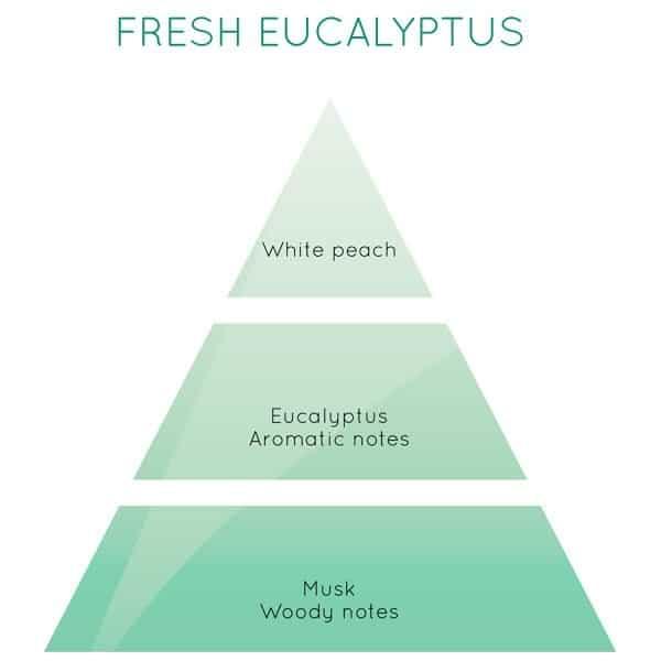 Lampe Berger - Fraîcheur d'Eucalyptus, 500ml
